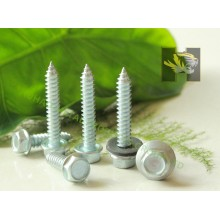 Tapping Screw,Self Tapping Screw,Hex Head Self Tapping Screw,Fasteners Screw,Galvanized Self Tapping Screw