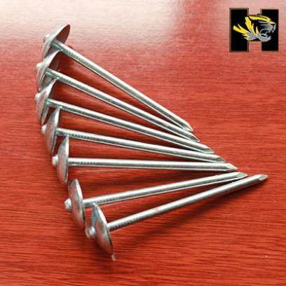 screw shank roofing nail,steel roofing nail,thread roofing nail,spiral shank roofing nail,smooth shank roofing nail